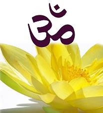 FFY_logo